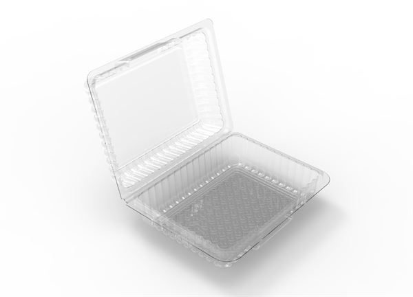 Large Oblong Hinged Pack Container